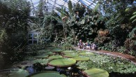 Edinburgh's Royal Botanic Gardens