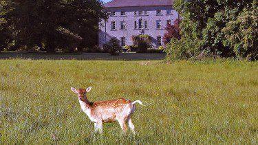 Hotel grounds in Co. Sligo