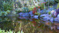 Your hotel boasts stunning gardens