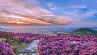 North Yorkshire Moors Cleveland Way