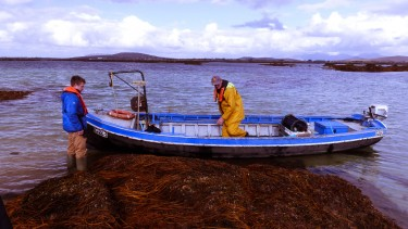 Connemara currach