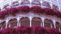 Floral balcony in Dublin
