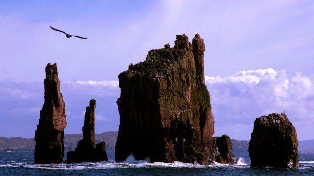 Sea stacks on Shetland
