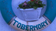 Try Tobermory's famous fish restaurant