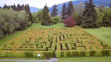 Traquair House Maze