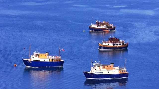 Spend your holiday on one of these fine vessels - Majestic Line