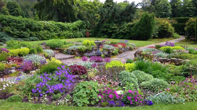 Discover beautiful blooms in Attadale Gardens