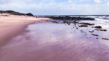One of Kintyre's glorious empty beaches